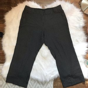 Lane Bryant Black and White Trousers